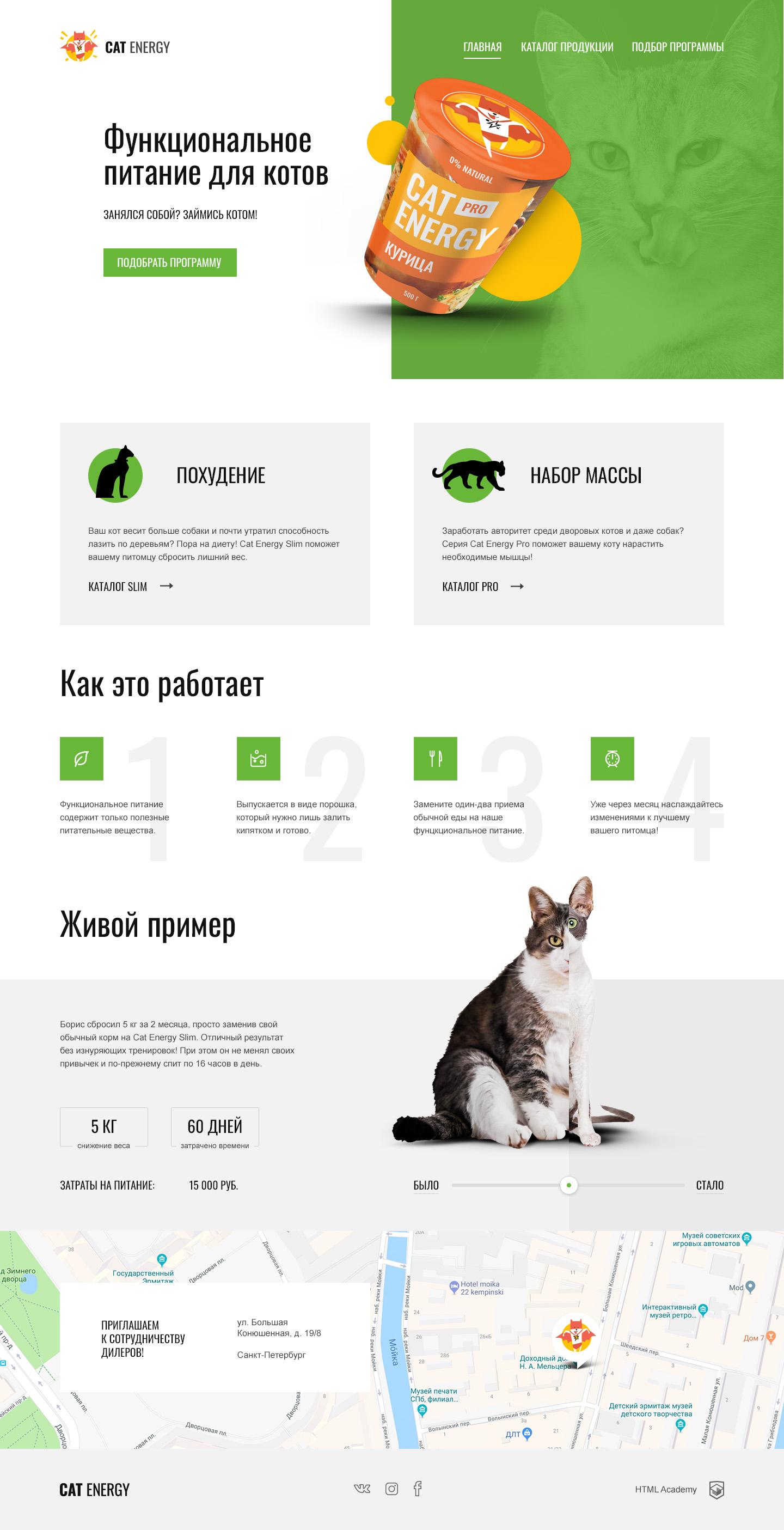 Разработка проекта Cat Energy